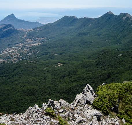 Calabria Environment